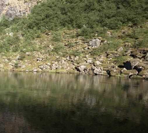 Lago en Lago Botnstjorn