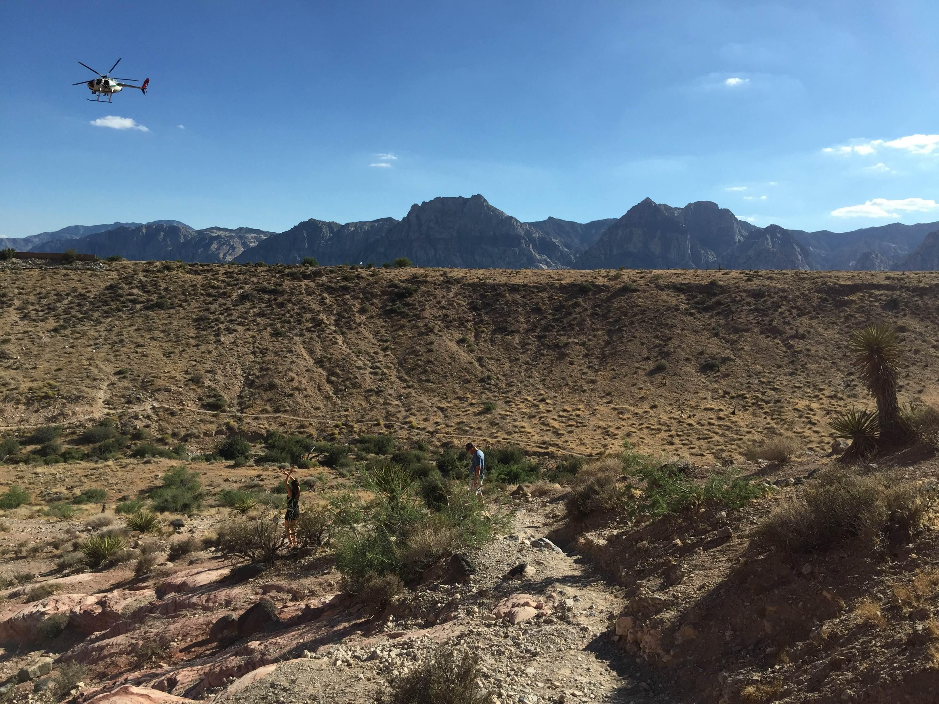 Camino en Red Rock Canyon National Conservation Area