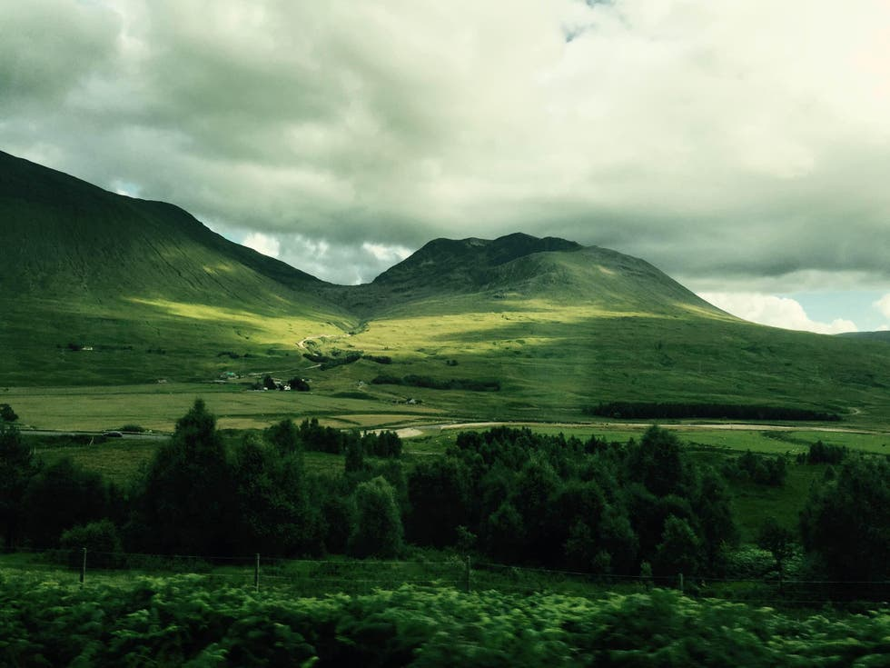 Verde en Bridge of Orchy
