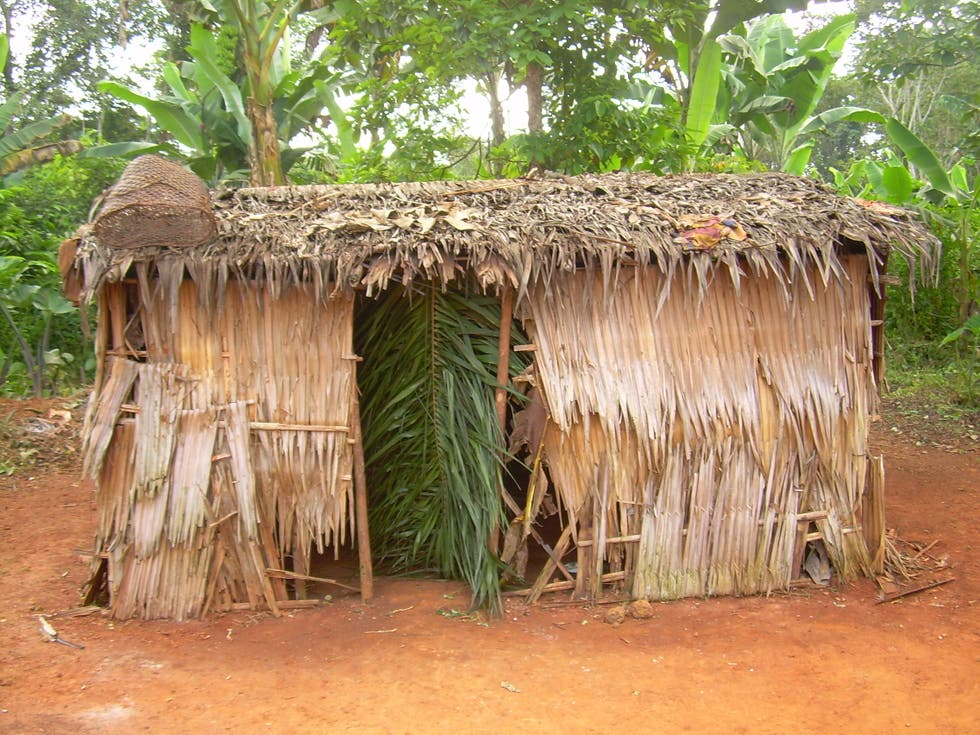 Hut in Cameroon