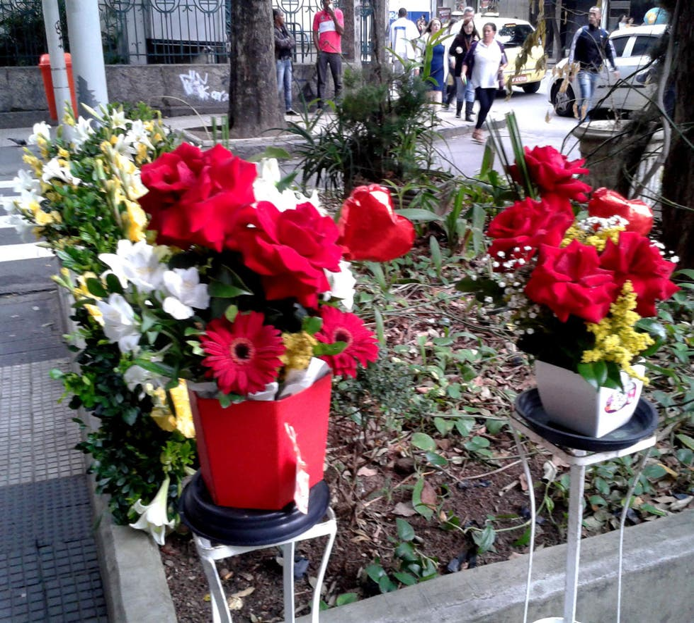 Color rosa en Florería Flor y Cultura