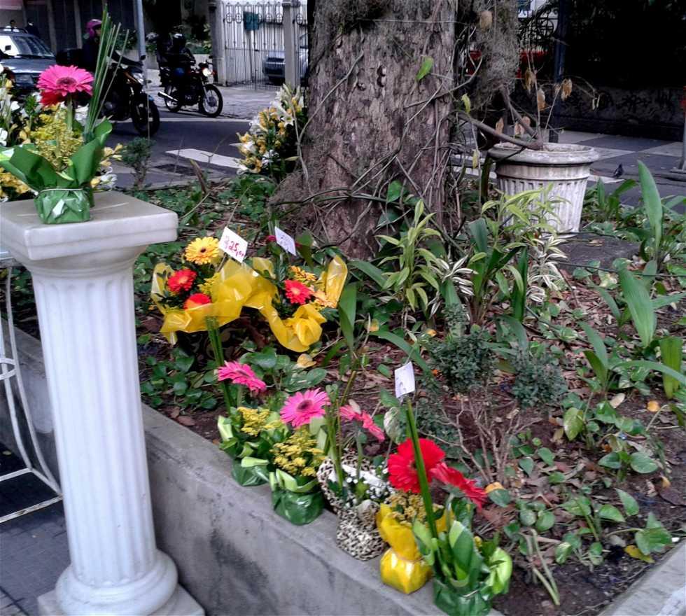 Amarillo en Florería Flor y Cultura