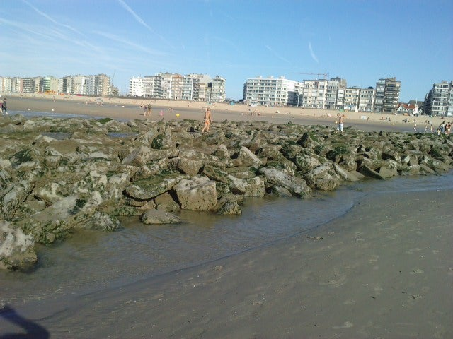 Sea in Koksijde