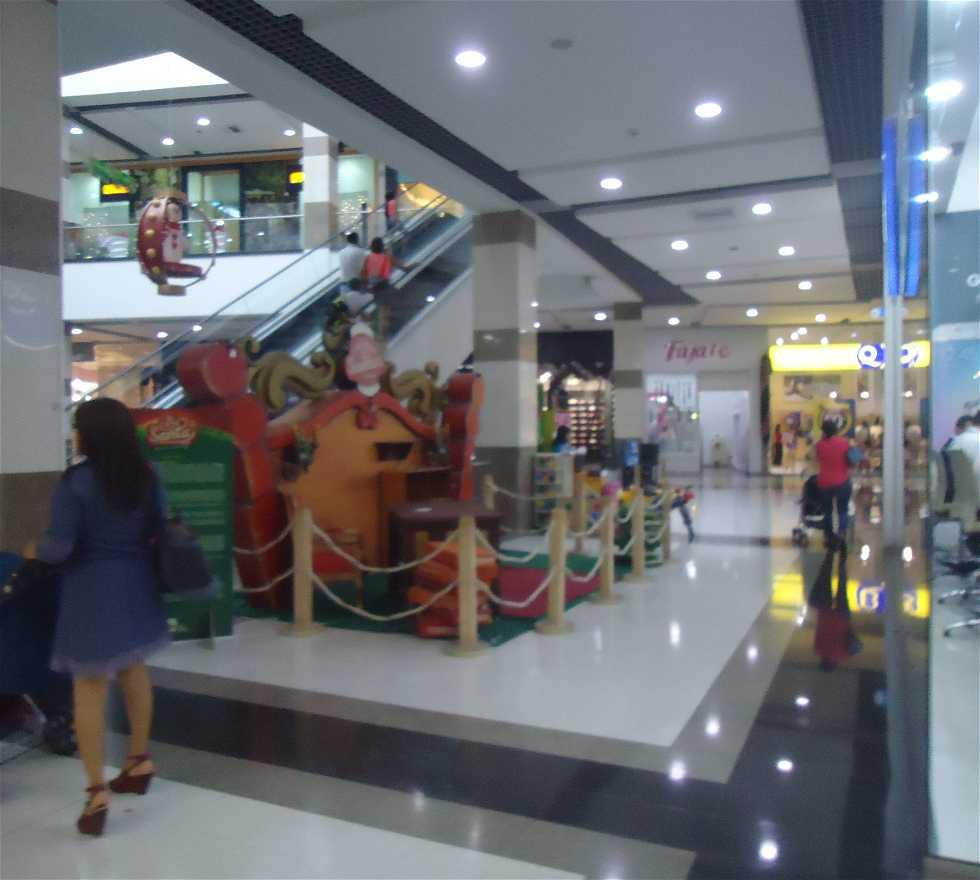 Tienda en Centro Comercial Megamall