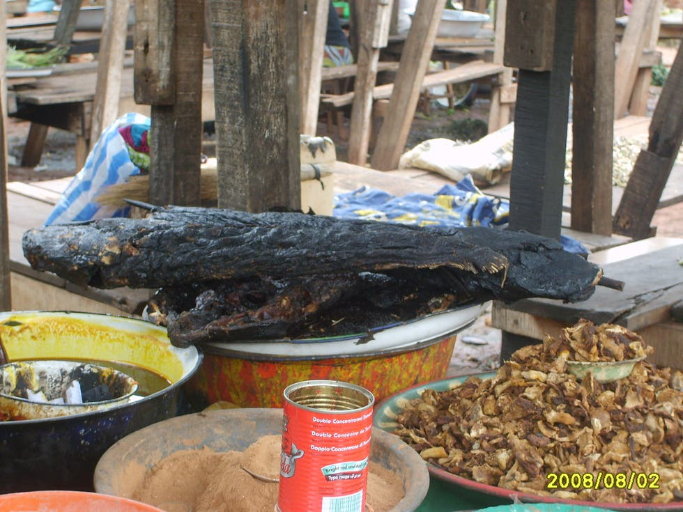 Dish in Central African Republic