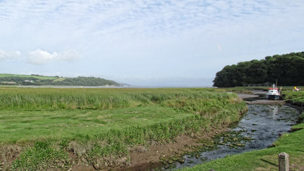 Mare a Laugharne