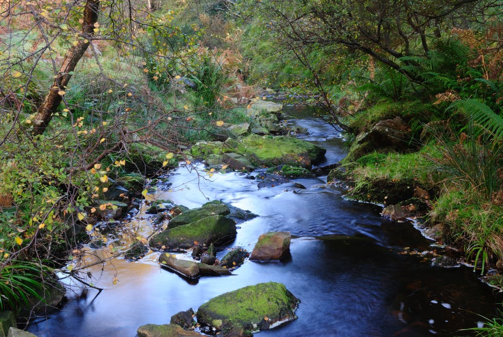 River in Donegal