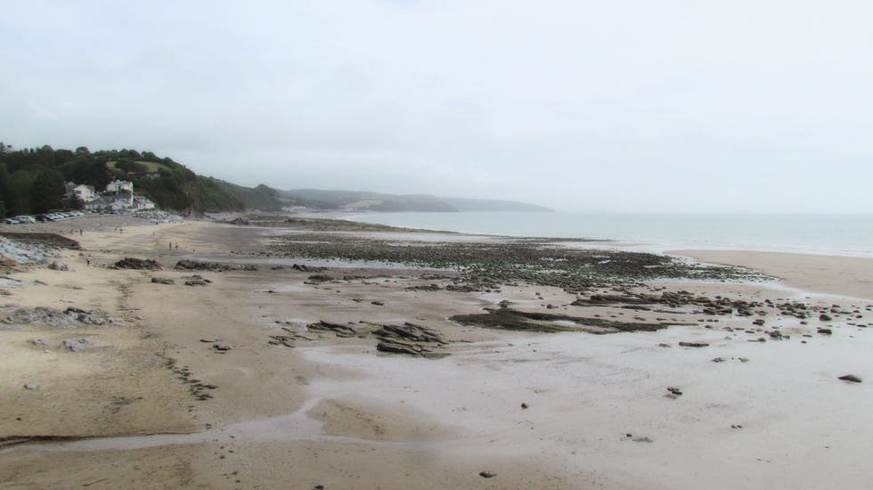 Mare a Saundersfoot