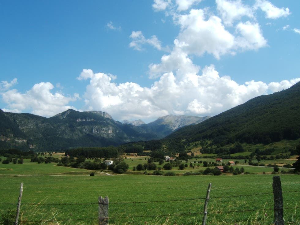Grassland in Roncal