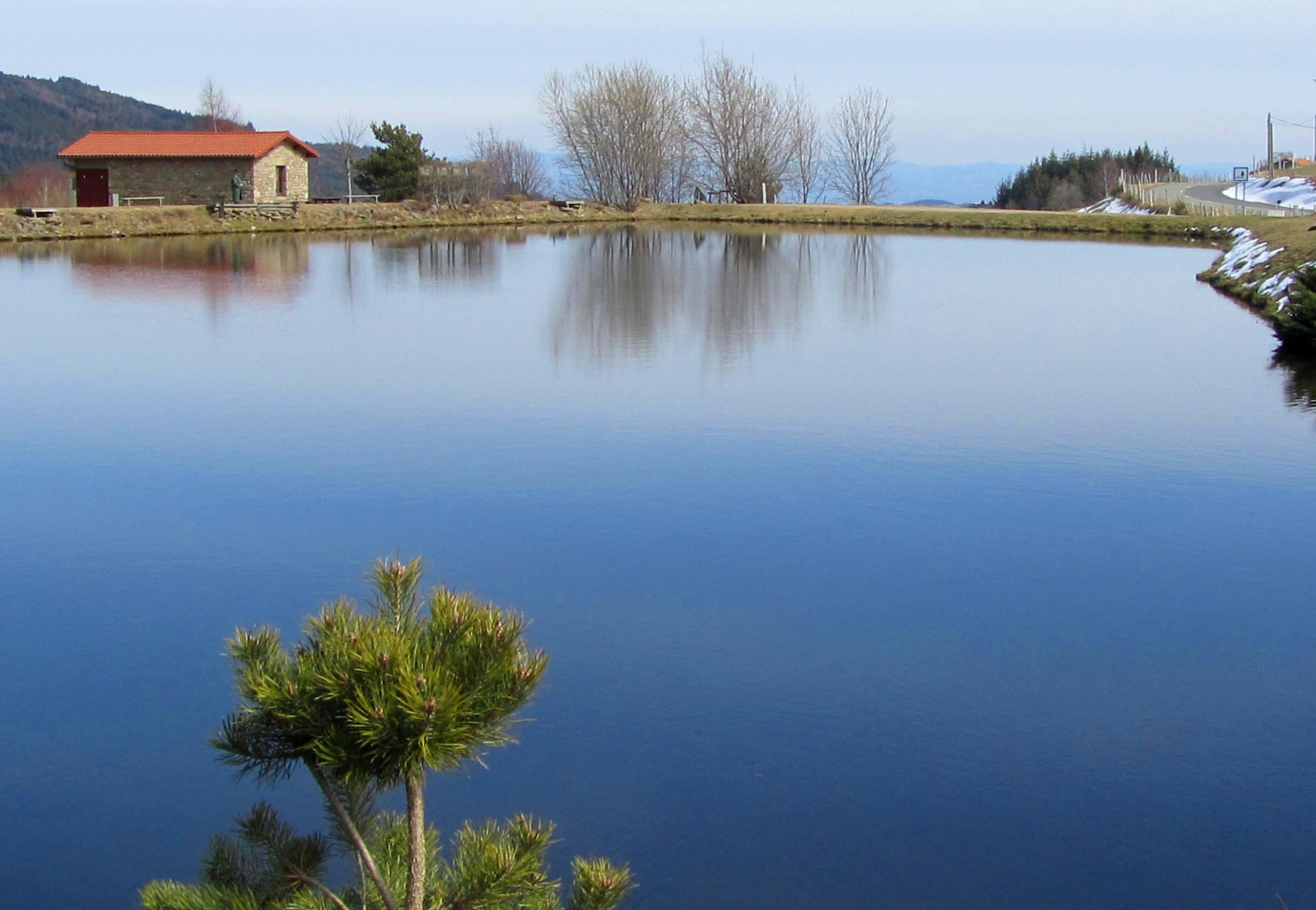Reflection in Sauvain