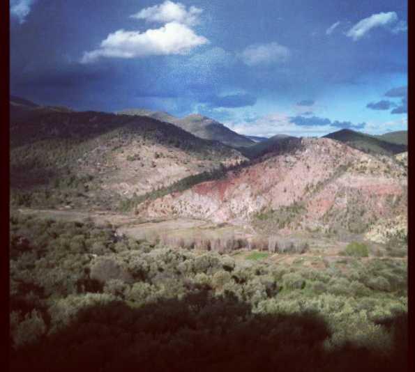 Naturaleza en La olmeda, cuenca