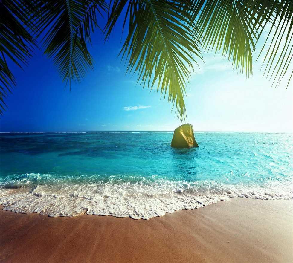 Ola en Hotel Finca EL Paraíso