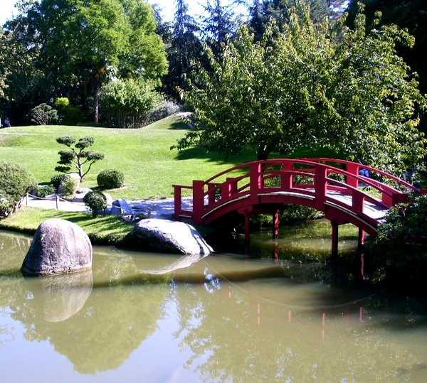 Canal en Jardín Japonés