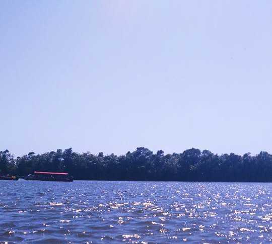 Mar en Rio Itapicuru em curso por Conde