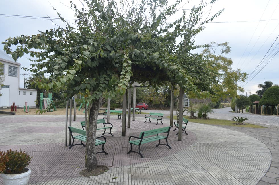 Planta en Praça do Imigrante