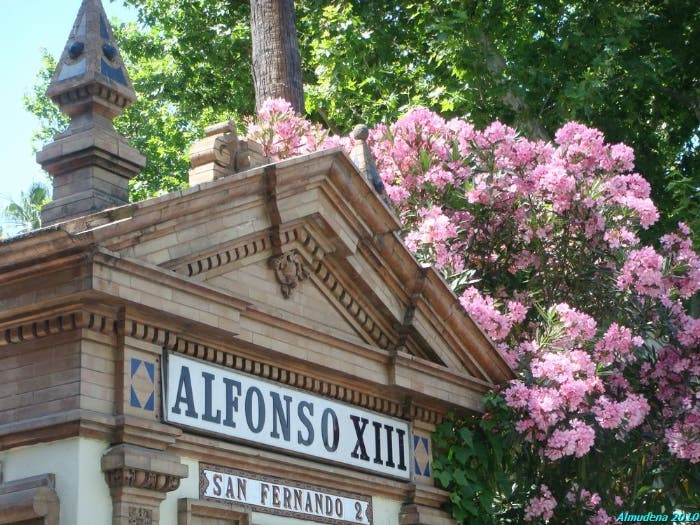 Flor en Hotel Alfonso XIII - A Luxury Collection Hotel