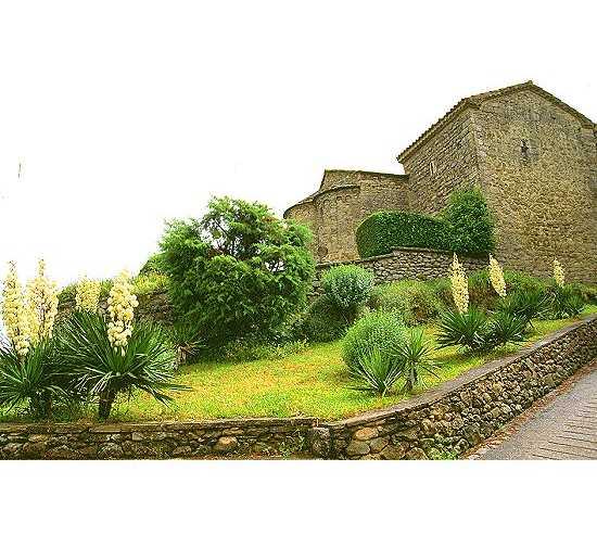 Vegetación en Santa Margarida de Montbui