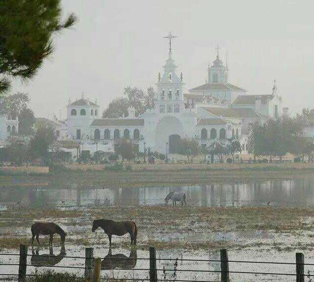 Atracción turística en Iglesia d'El Rocio