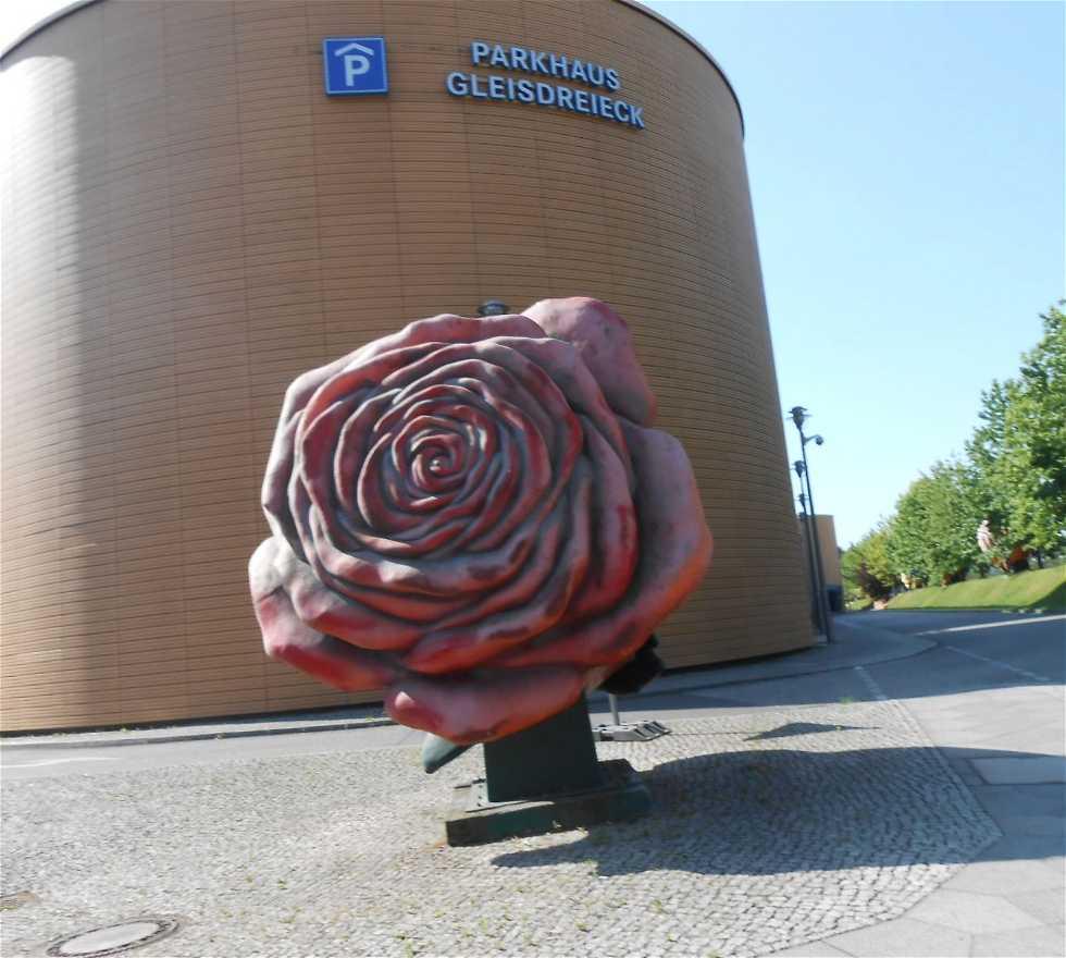"""Color rosa en Rose del parcheggio fiera """"Premium"""""""