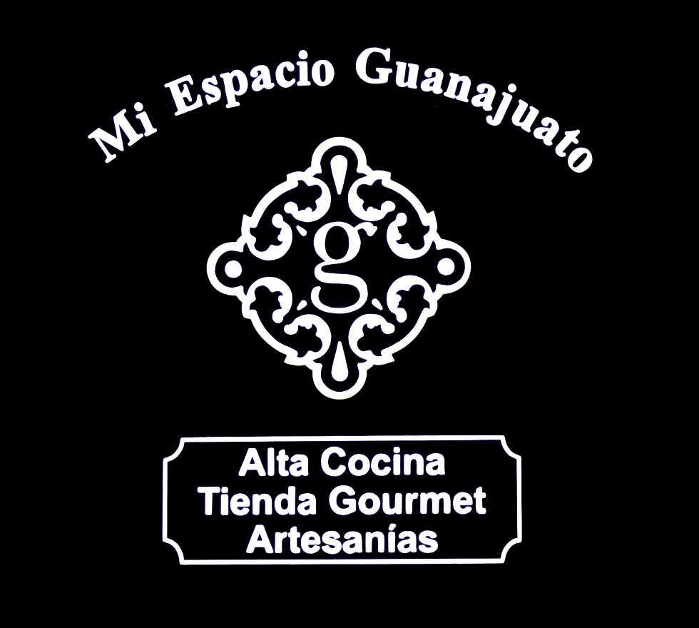 Diseño gráfico en Mi Espacio Guanajuato