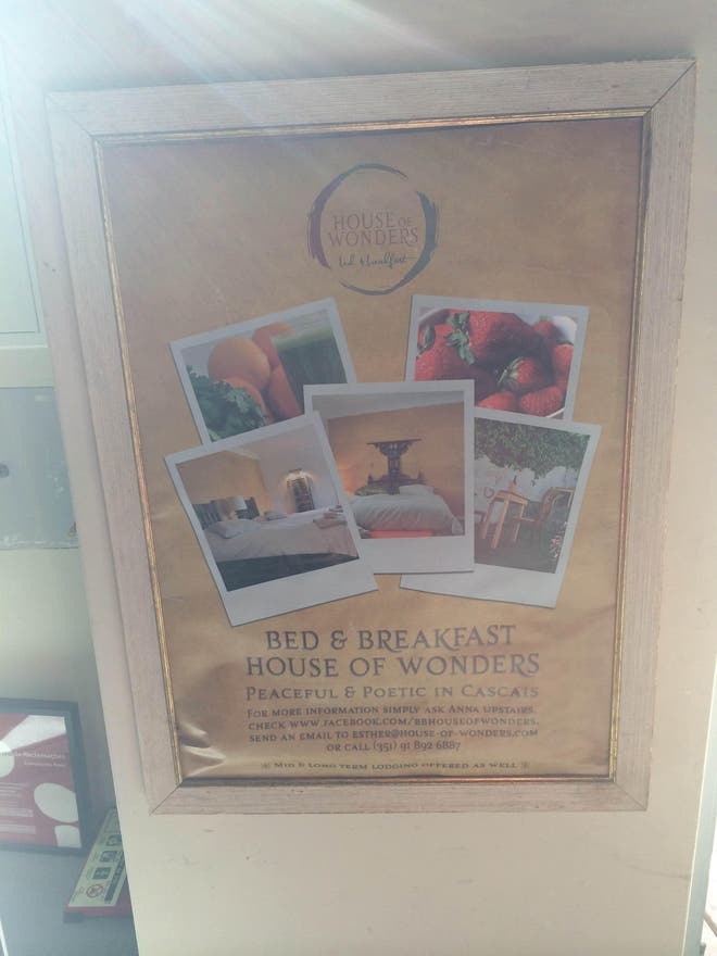 Balda en Cafe Galeria House of Wonders