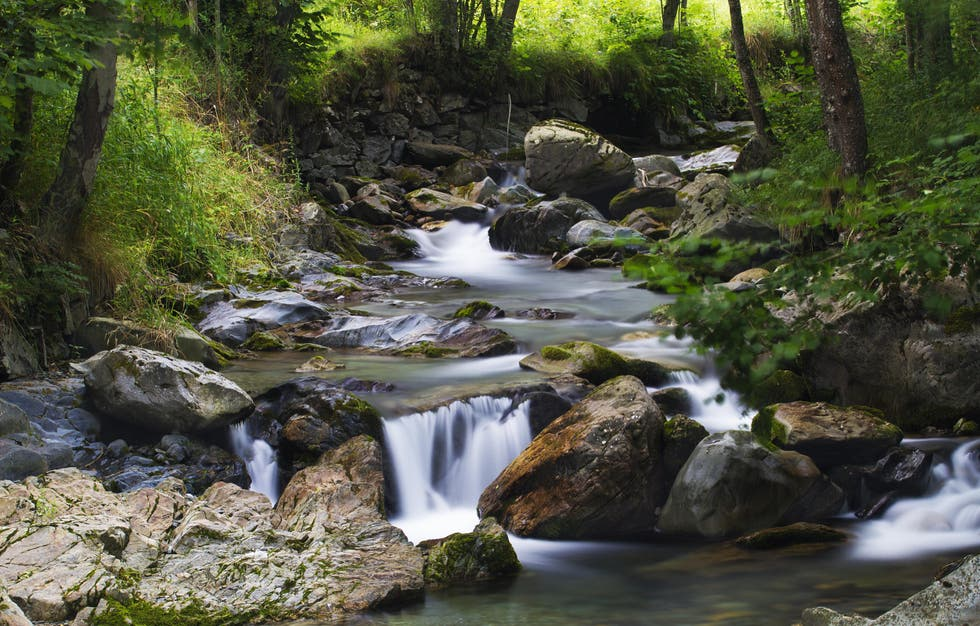 Stream in Bagergue