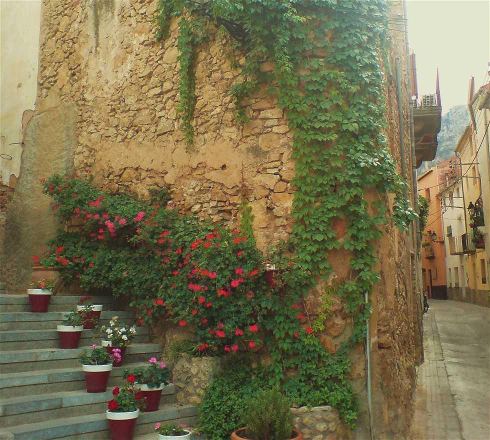 Verde en Tivissa