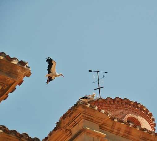 Cielo en Cigüeñas en Briñas