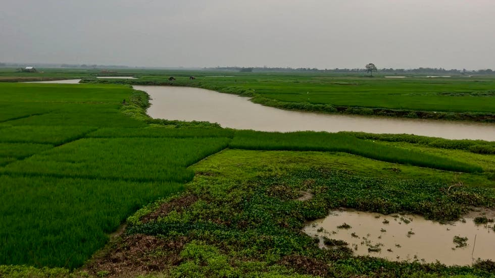 Water Resources in Ranaghat