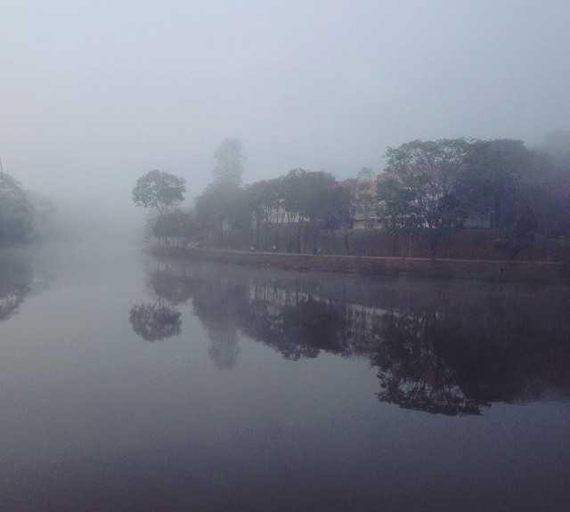 Niebla en Viçosa