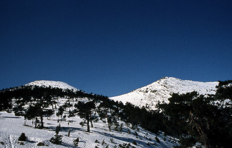 Blue in Cercedilla