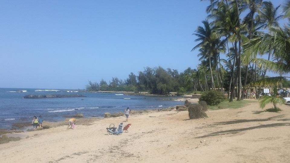 Vacation in Haleiwa