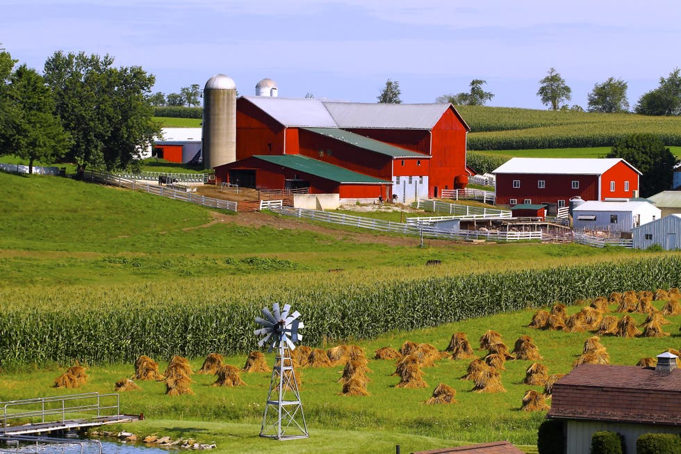 Farm in Millersburg