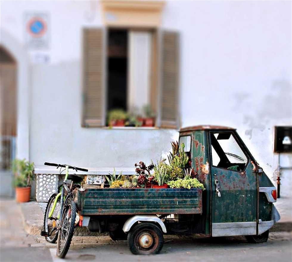 Automobile in Gallipoli