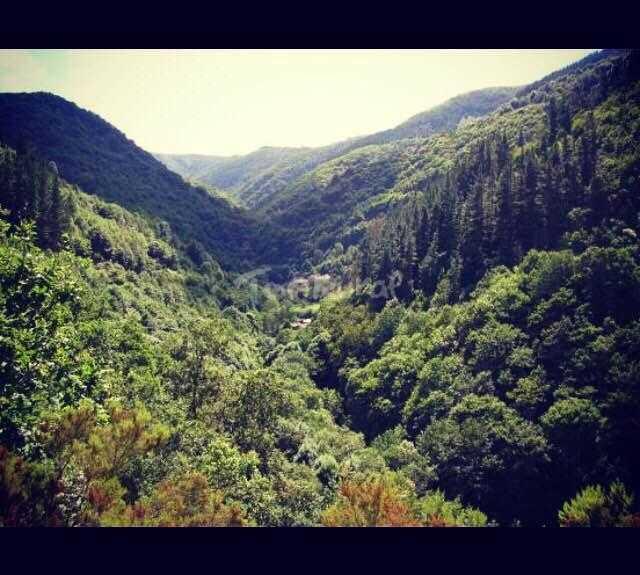 Naturaleza en Casa Rural La Posada De Oscos