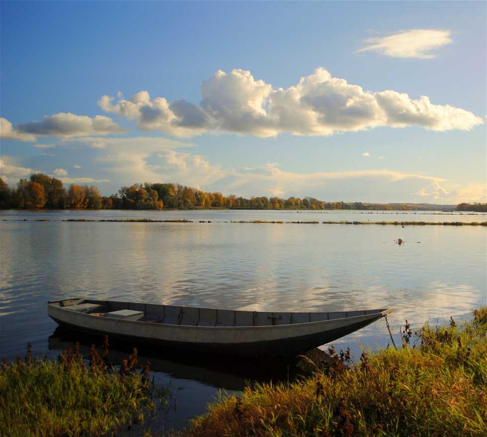 Orilla en El Loire en Bouchemaine