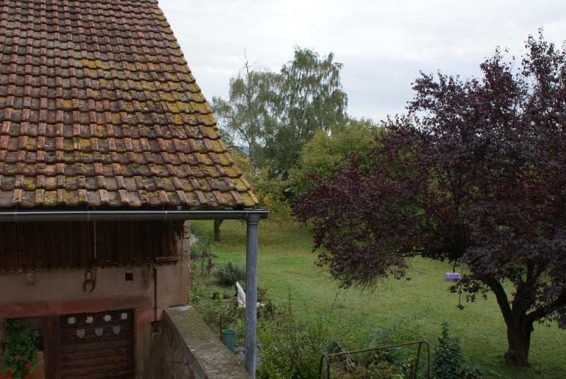 Photos de maison rurale le gite des lapins muntzenheim for Gite rurale