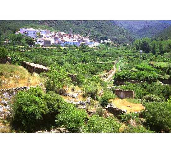 Estate in Eslida