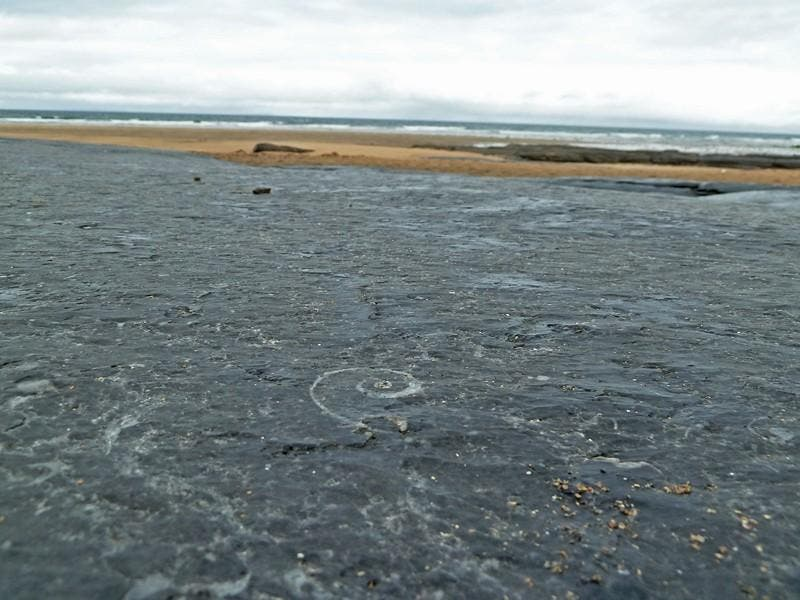 Body Of Water in Fanore