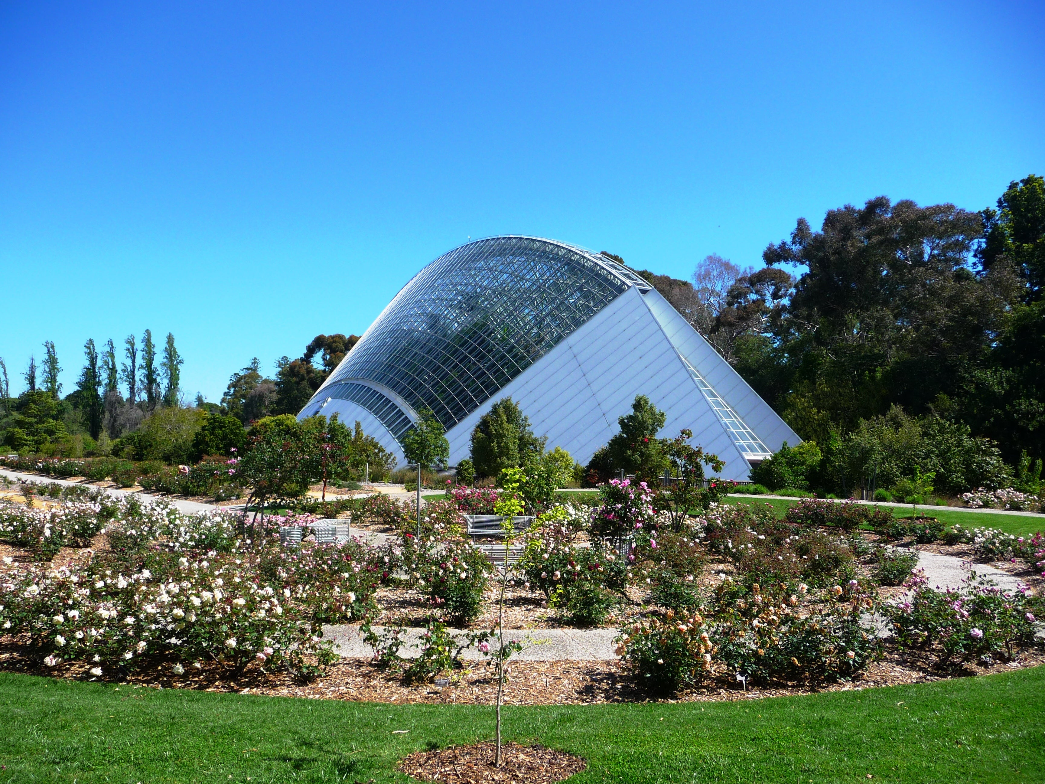 Photos of botanic gardens of adelaide images for Adelaide gardens