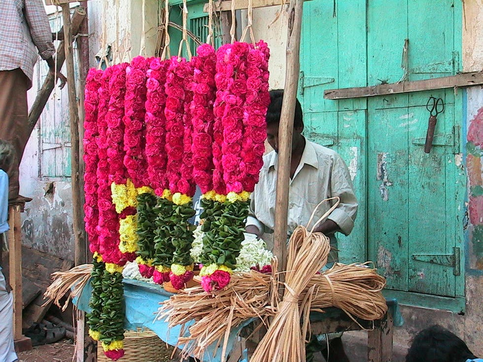 Flower in India