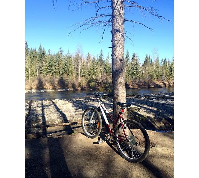 Bicicleta en Fish Creek Provincial Park
